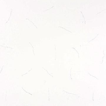 3110 Serra White