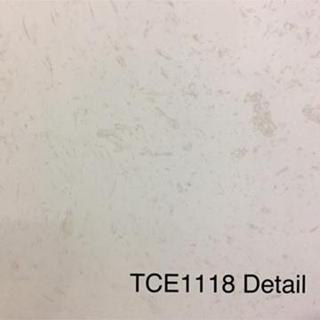 TCE 1118