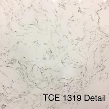 TCE 1319